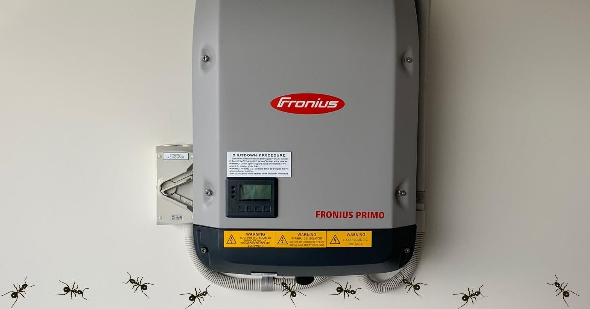 Why Ants Nest in Solar Inverters (and how to deal with them)